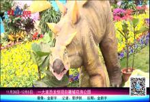 一大波恐龙惊现白麓城花海公园