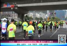 2015首届温州马拉松热力开跑